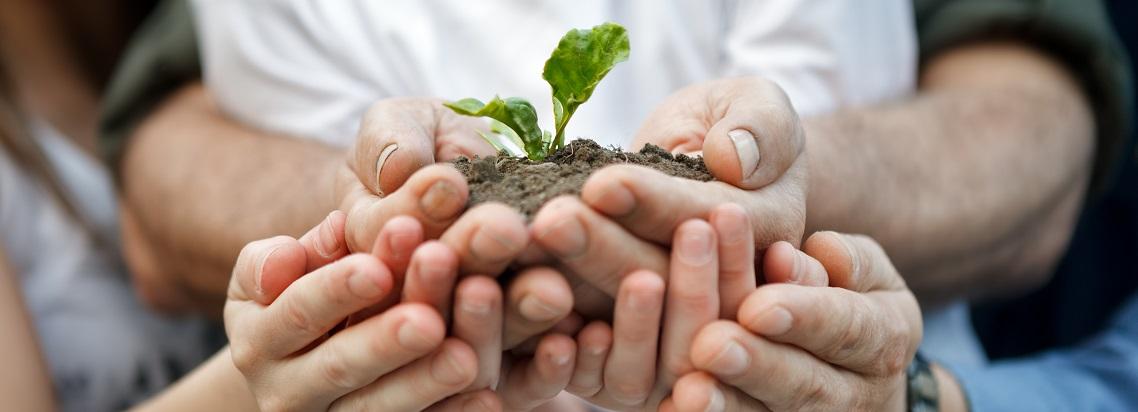seed venture capital