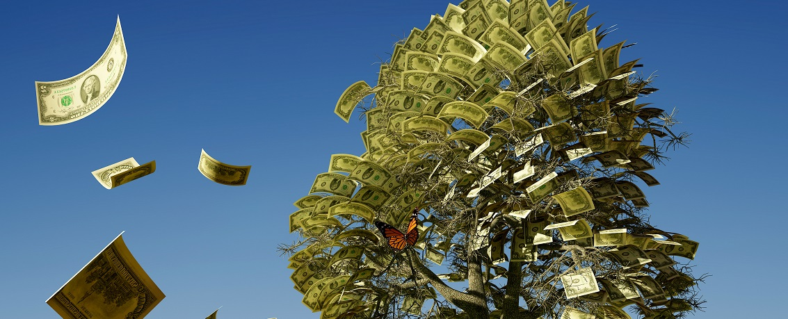 Money Tree 3 cropped