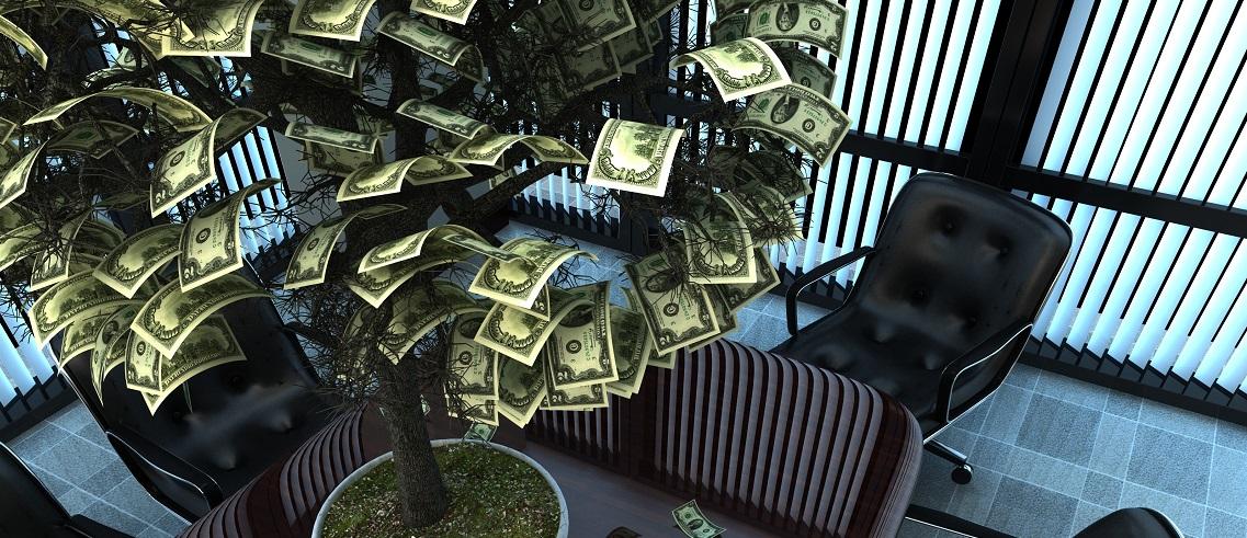 Money Tree 2 cropped