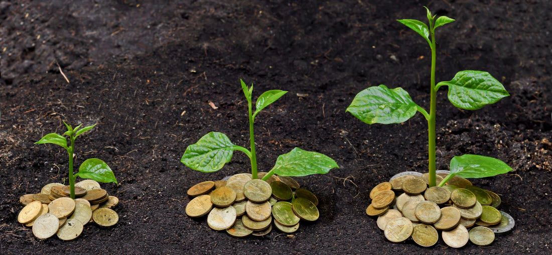 seed investment activity (CB Insights)