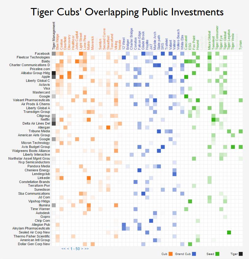 novus tiger cub public market overlap