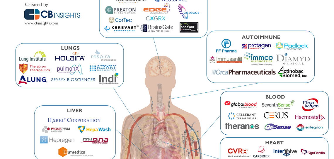 The Anatomy of Healthcare Startups: 69 Companies In Patient Treatment