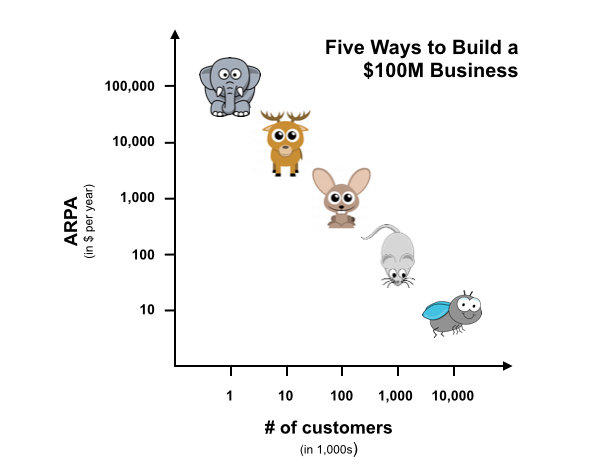 building a $100 million revenue business