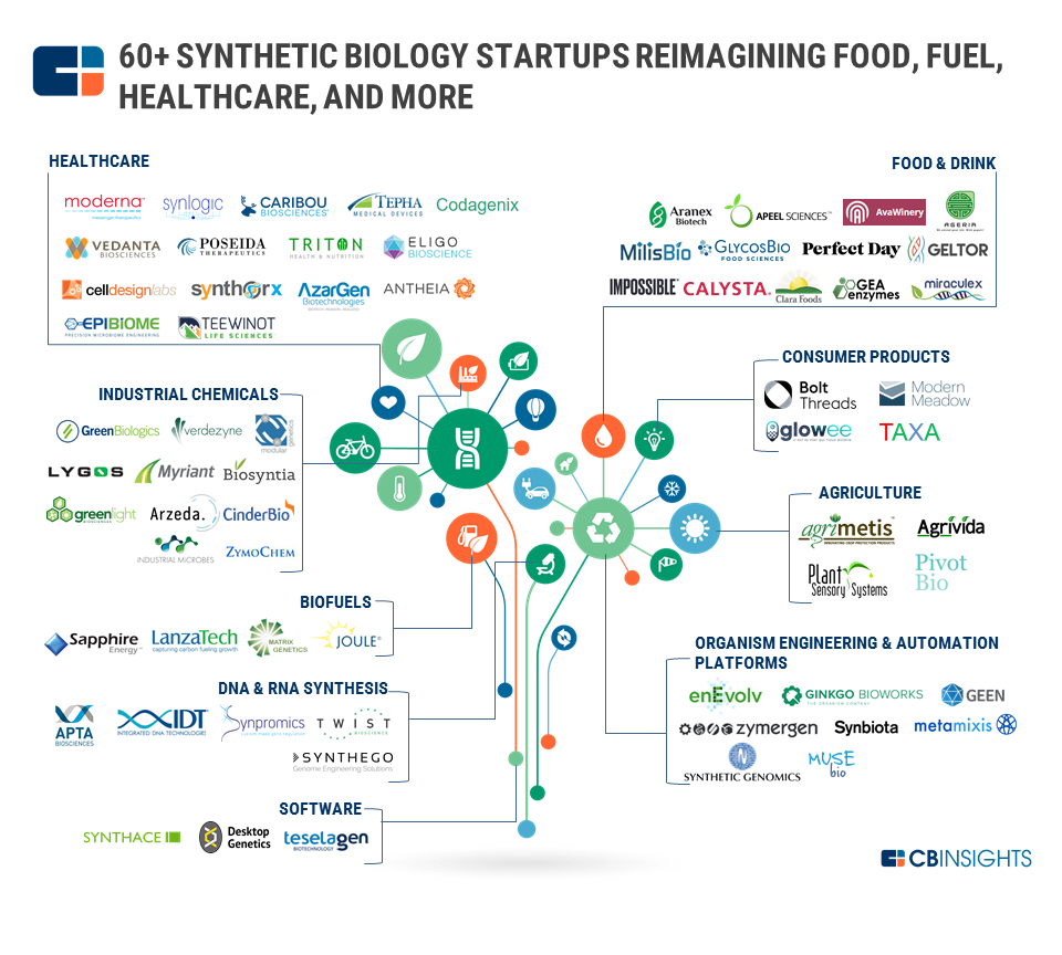 60 Synthetic Biology Startups Reimagining Food Fuel