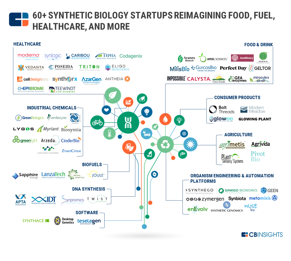 biology synthetic market map startups insights healthcare companies graphic startup cbinsights wellness fuel maps femtech private space jet milk industries