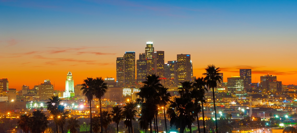 Los Angeles Downtown Sunset with Palm Tree Silhouettes, Wide Angle